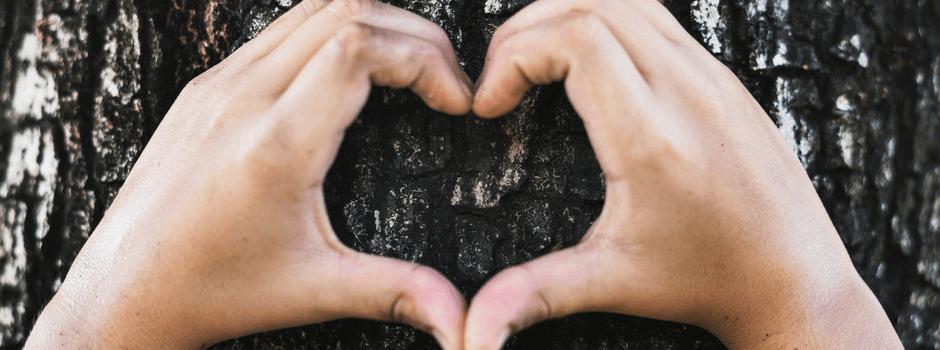 Reduce la huella de carbono de tus viajes