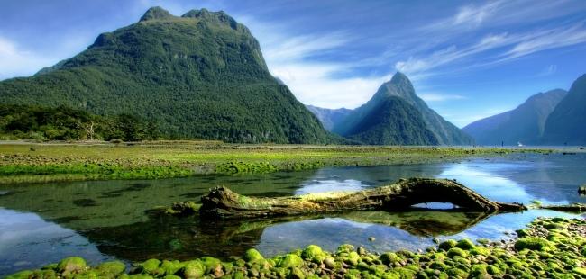 Nzelandia8