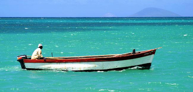 Mauricias2