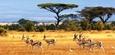 Tanzania8