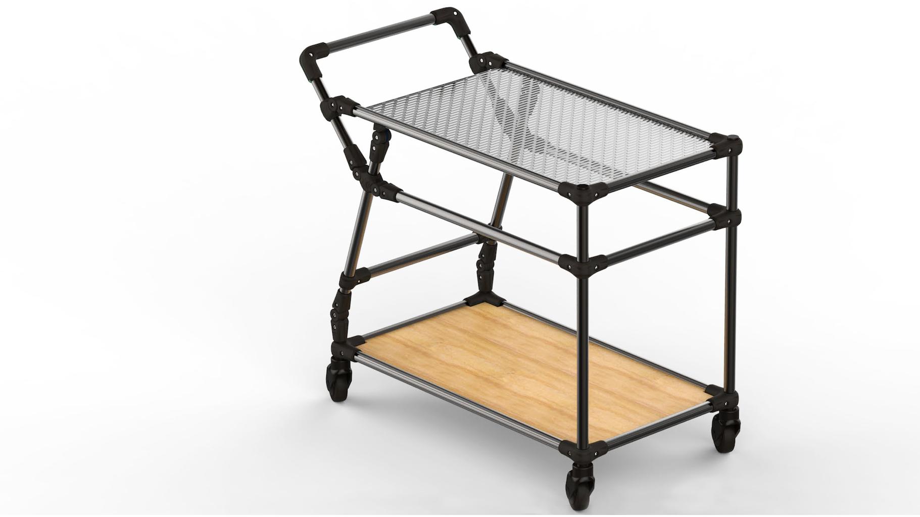 Multi-purpose trolley