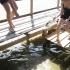 Krabben fangen in Bigi Pan :D