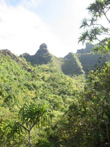 Hawaii 2007