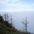 Aussichtspunkt Wonder View im Nebel