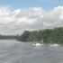 Immernoch aufm Amazonas