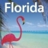 Florida (Lonely Planet Florida) von Jeff Campbell (Autor), Becca Blond (Autor), Jennifer Denniston (Autor), Beth Greenfield (Autor), Adam Karlin (Autor), Willy Volk (Autor)