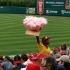 Zuckerwatte im Baseballstadion