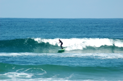 San Diego - Paddle Surf