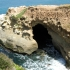 The Cove La Jolla