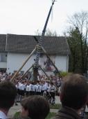 Maibaum - Aufstellen mit Schwalben Siegertsbrunn 2010