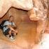 Höhlenmensch USA