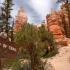 Red Canyon kurz vor Bryce