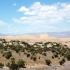 Mesquite Flats Sand Dunes Death Valley