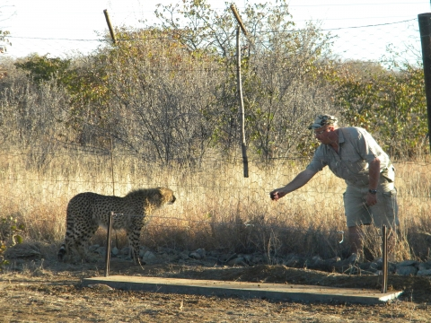 Etosha National Park - www.sophienhof-lodge.com
