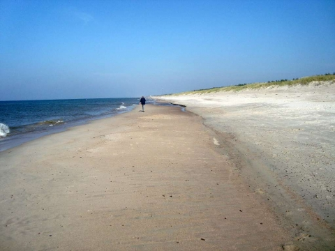Kurische Nehrung - Strand bei Juodkrante