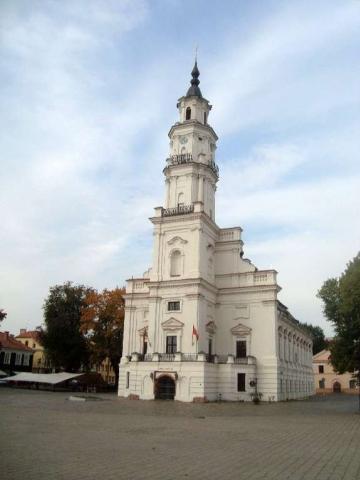 Kaunas - Weißer Schwan