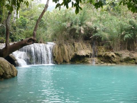 Louangphrabang - Kuang Si Wasserfälle