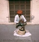 Schlangenbeschwörer in Jaipur