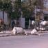 Straßenszene in Varanasi