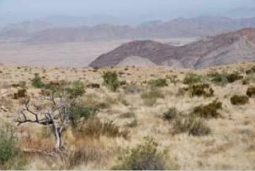 Namibia 2011 / 2012