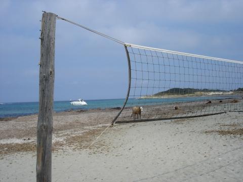 Nonza - Strand von Barcaggio