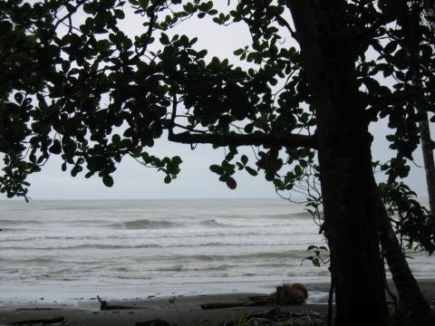 Cahuita - Karibikküste bei Regen