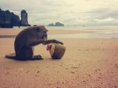 Krabi - Aonang Beach