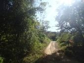 NicoyaRoad