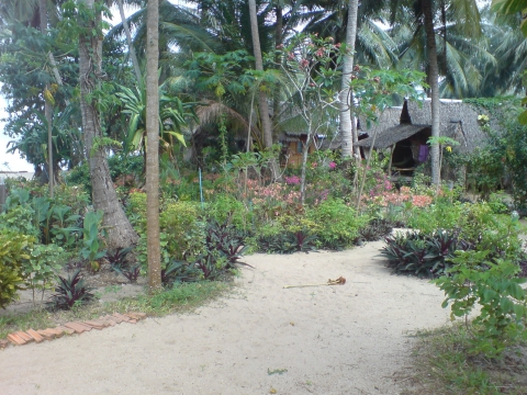 Koh Phangan - Seaflower Bungalows