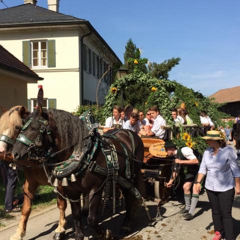 Siegertsbrunn - Leonhardi-Fahrt 2015 - Bild 73