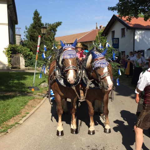Siegertsbrunn - Leonhardi-Fahrt 2015 - Bild 76