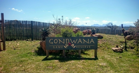 Mossel Bay - Gondwana Game Reserve