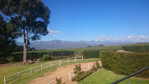 Stellenbosch - Vinelands- Marianne