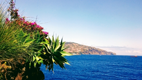 Madeira- Blumenkorb im Atlantik