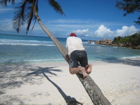 Hochzeitsreise auf die Seychellen
