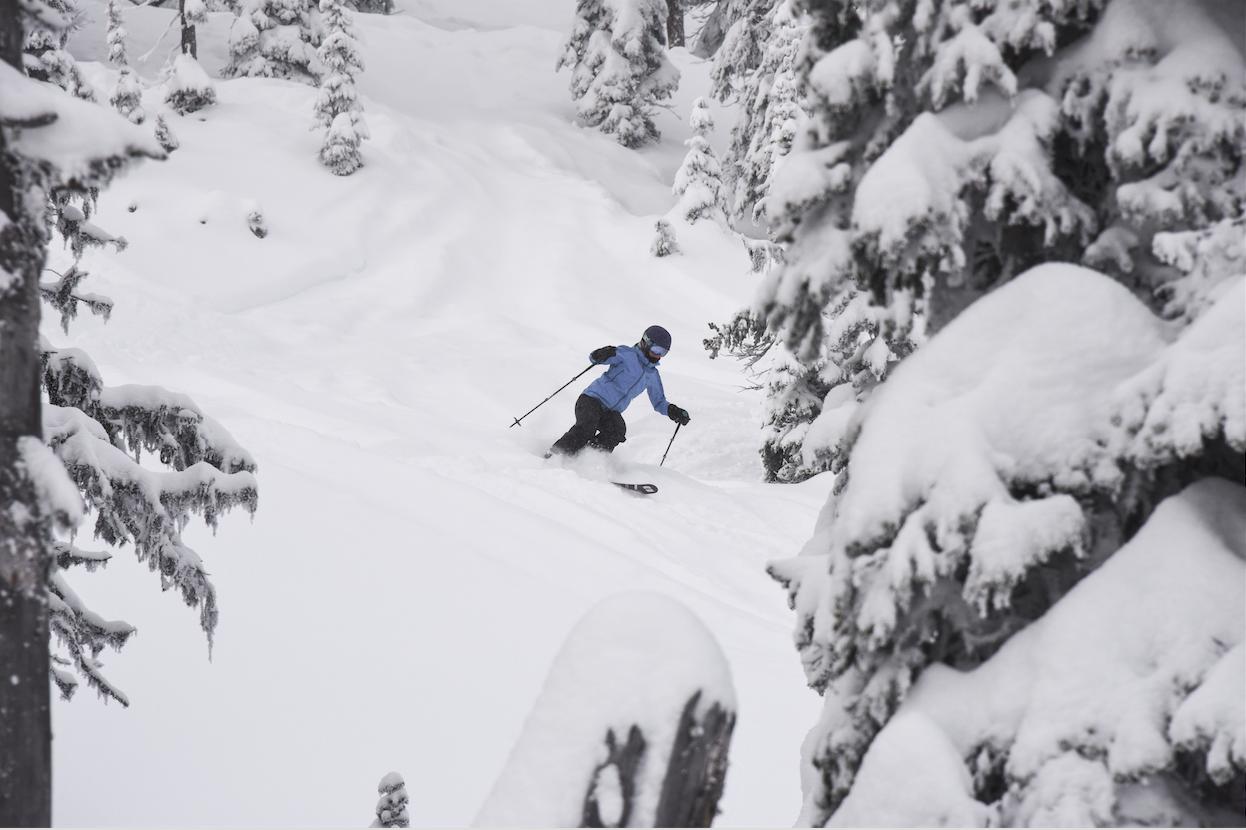 Ski Ski Ski Ski Ski Ski