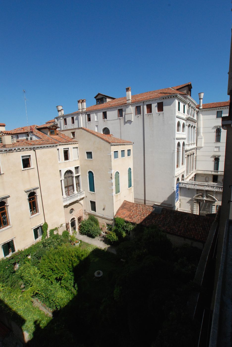 the view from the front terrace on Ca' Pesaro and gardens