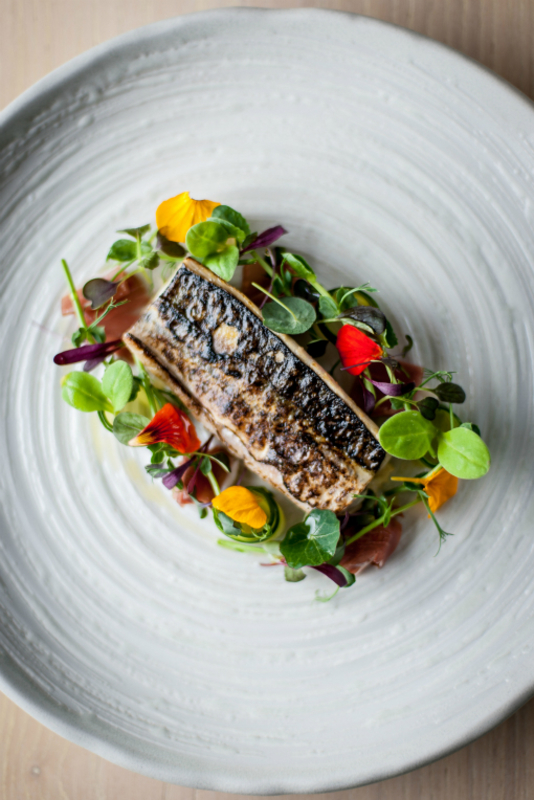 Torched Cornish Mackerel Paul Ainsworth David Griffen Photography
