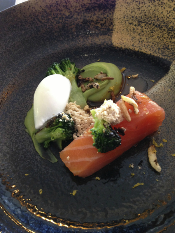 Salmon & broccoli, yogurt