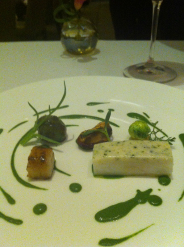turbot 'Cy Twombly'