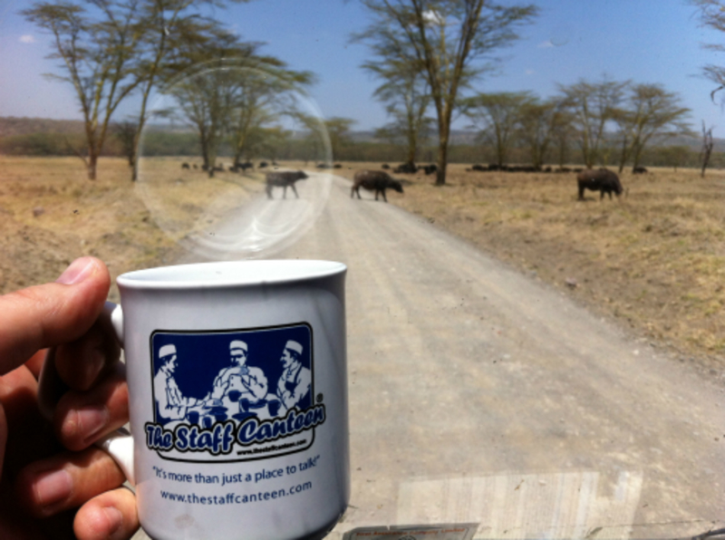 buffalo crossing and mug