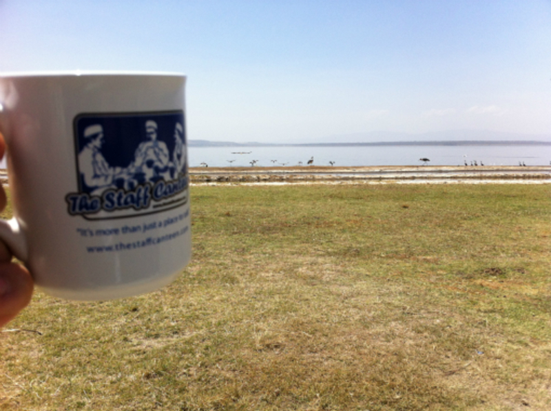 pelicans at lake nakuru, nairobi (&mug)