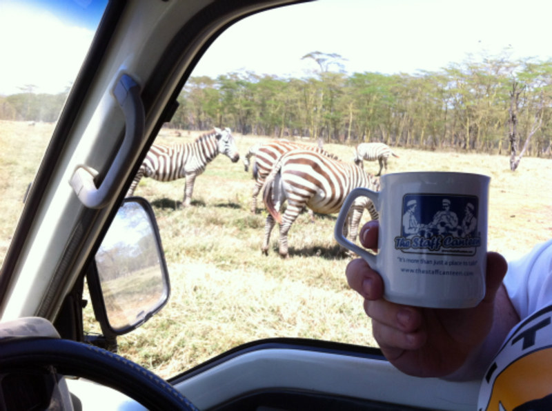 kevin barron, zebras and mug