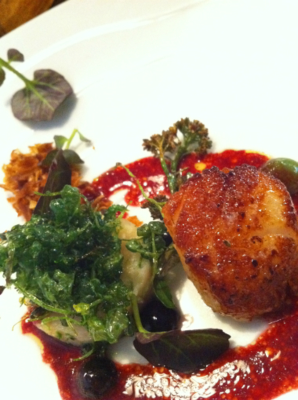roasted scallop, cured char,