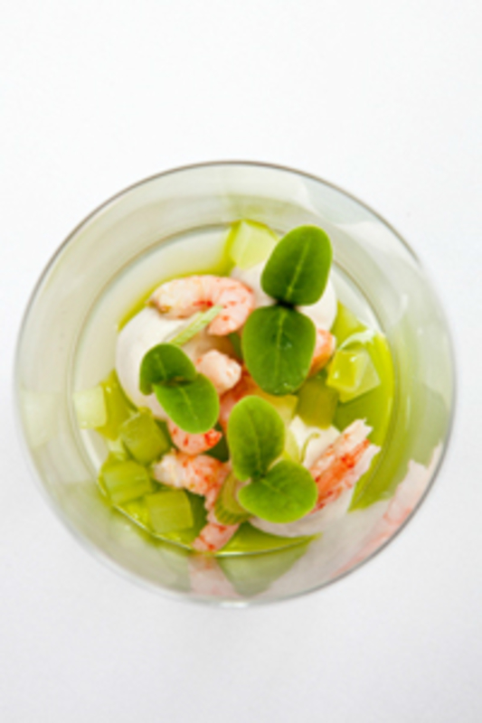 Oyster bavarois with pickled cucumber jelly, mylor prawns and borage