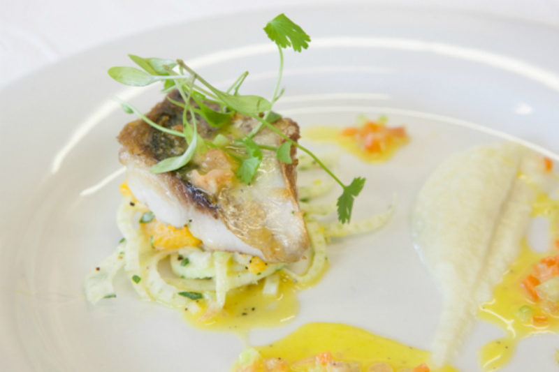 Pan Fried Fillet of Fresh Local Mackerel on a Fennel and Orange salad, with Fennel Puree and a Citrus Dressing