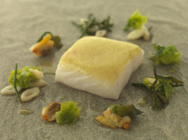 STEAMED FILLET OF GHIA HALIBUT CLAMS & SEA VEGETABLES