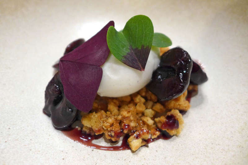 Macerated Cherries with Sweet Cheese, Hazelnut, Oxalis