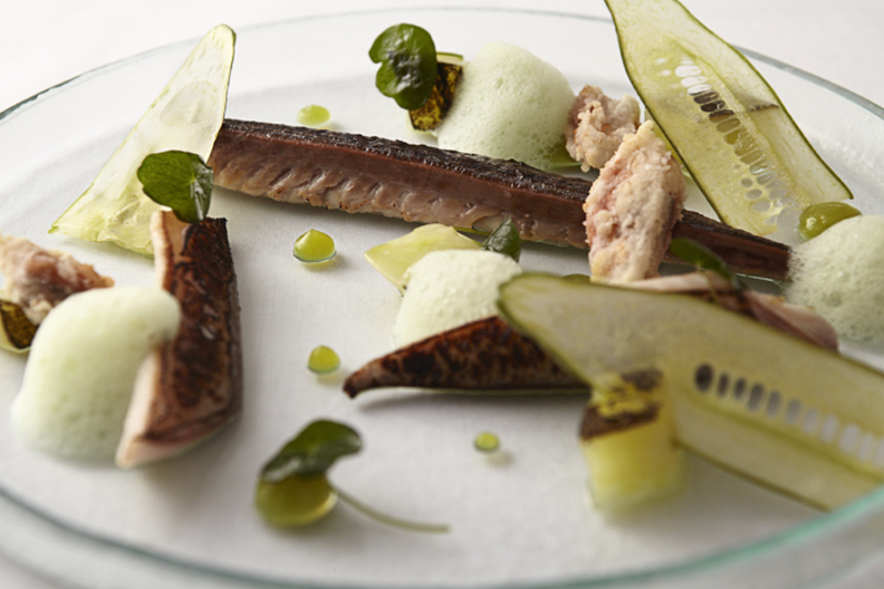 Shime Saba: cured mackerel with cucumber textures