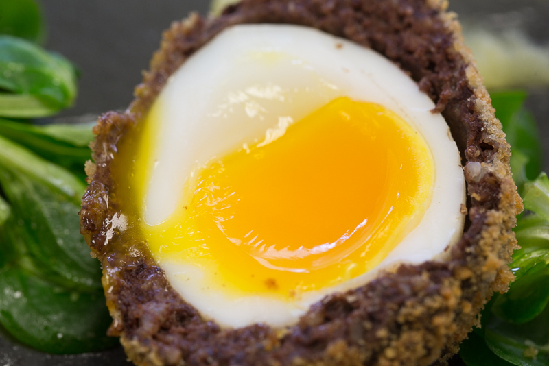 Free range duck egg and Bury black pudding scotch egg